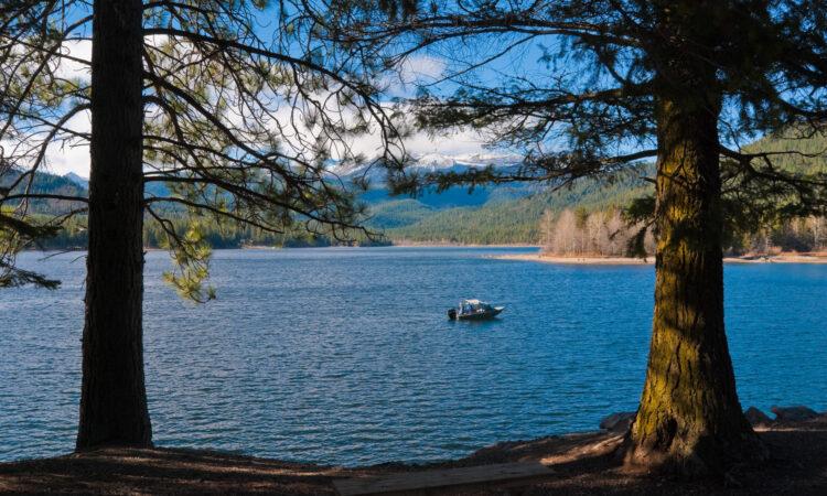 Shade and Shasta Lake