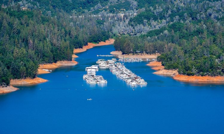 Visit Holiday Harbor: One of Shasta Lake's Best Marinas